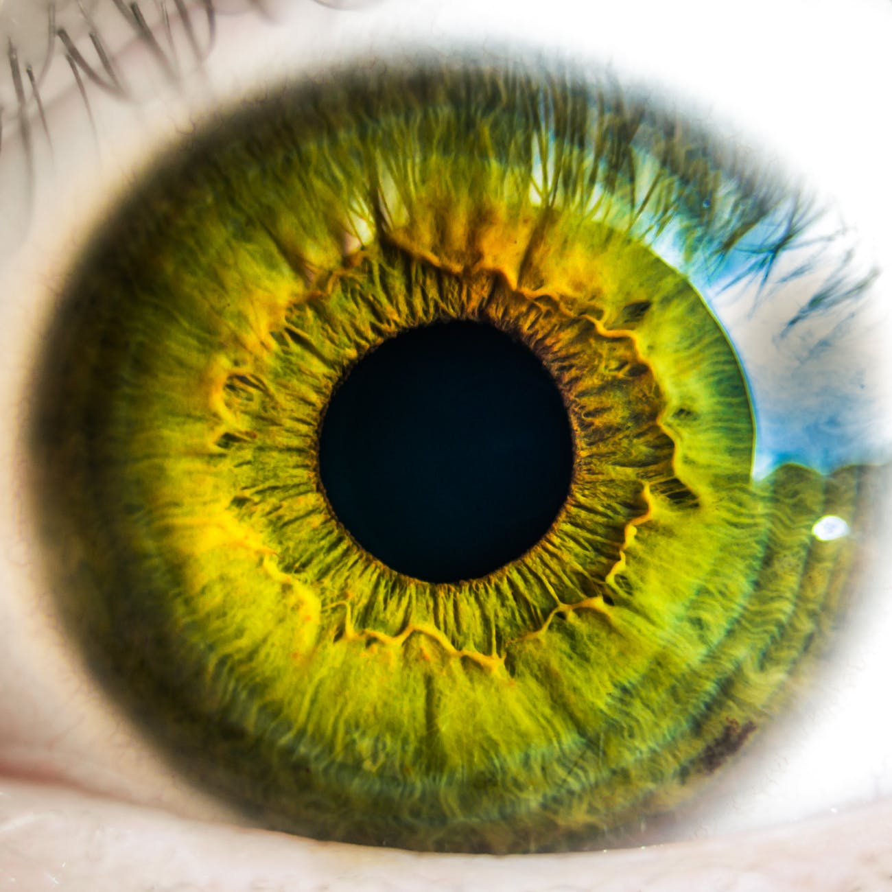 Eye Health – What Actually Worsens Vision and What Supports the Eyes?