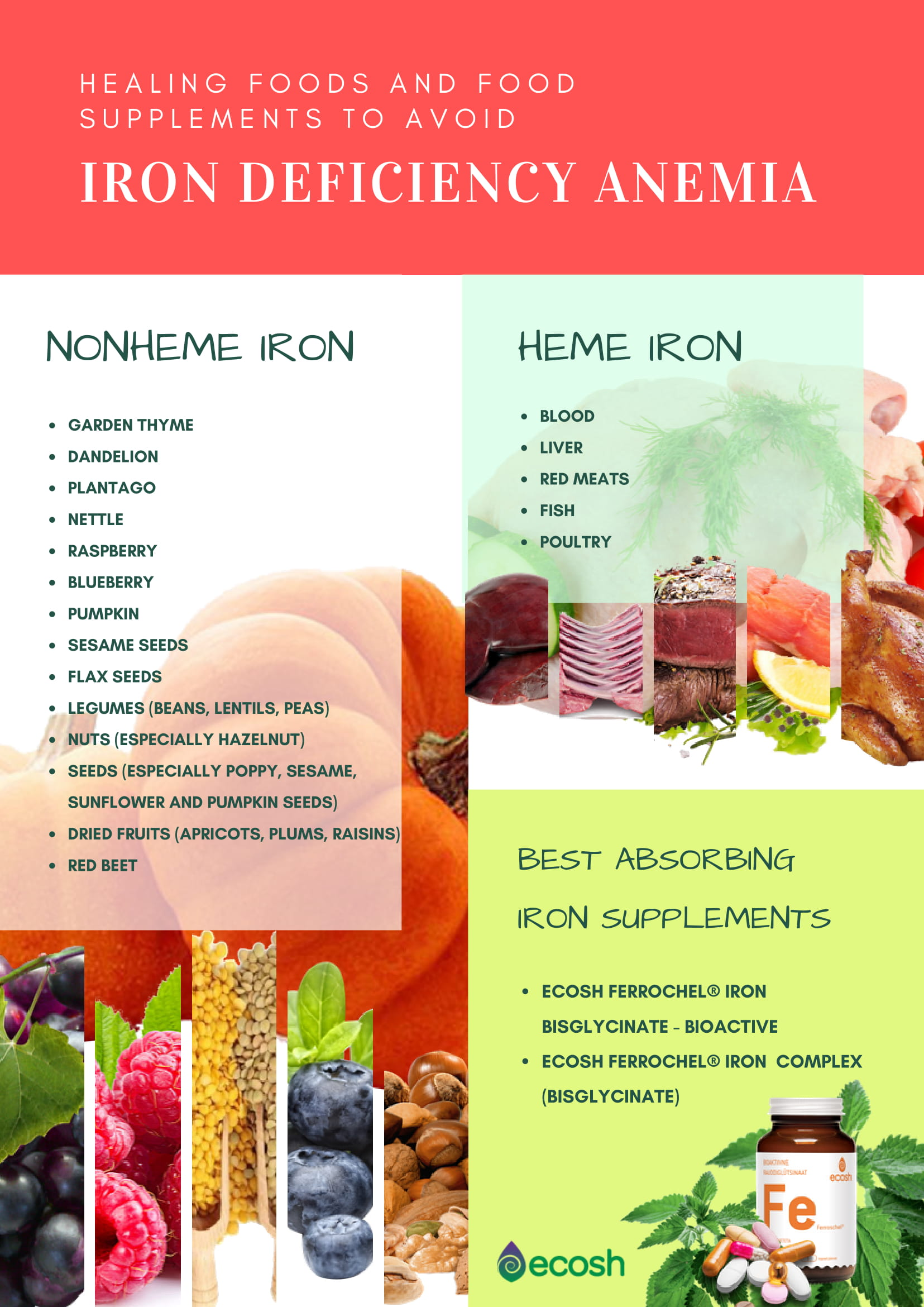 Healing Foods and food supplements to avoid iron deficiency anemia