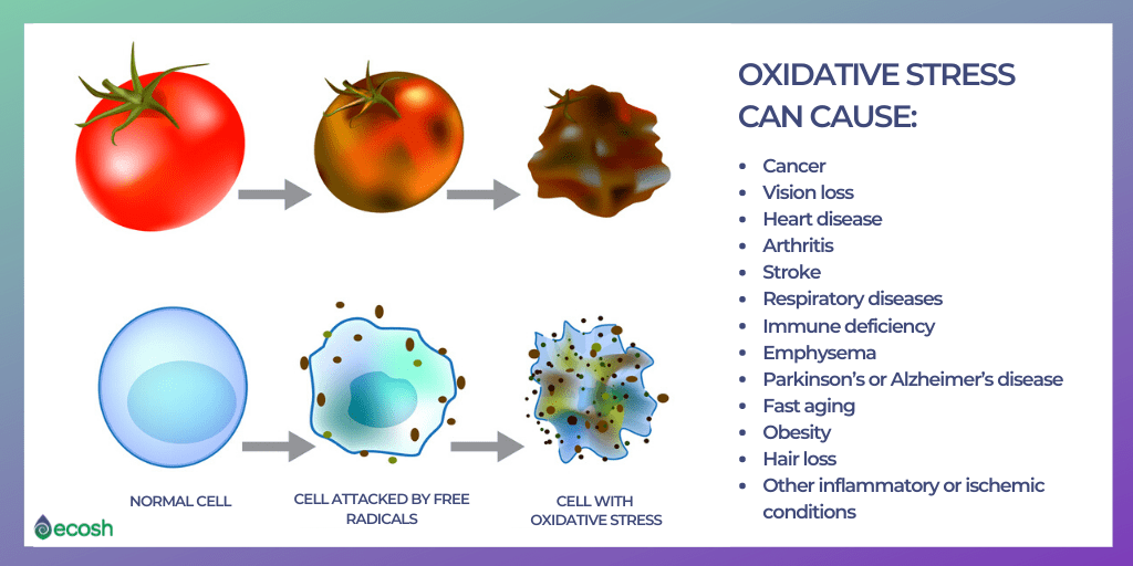 Oxidative_stress_cause_cancer