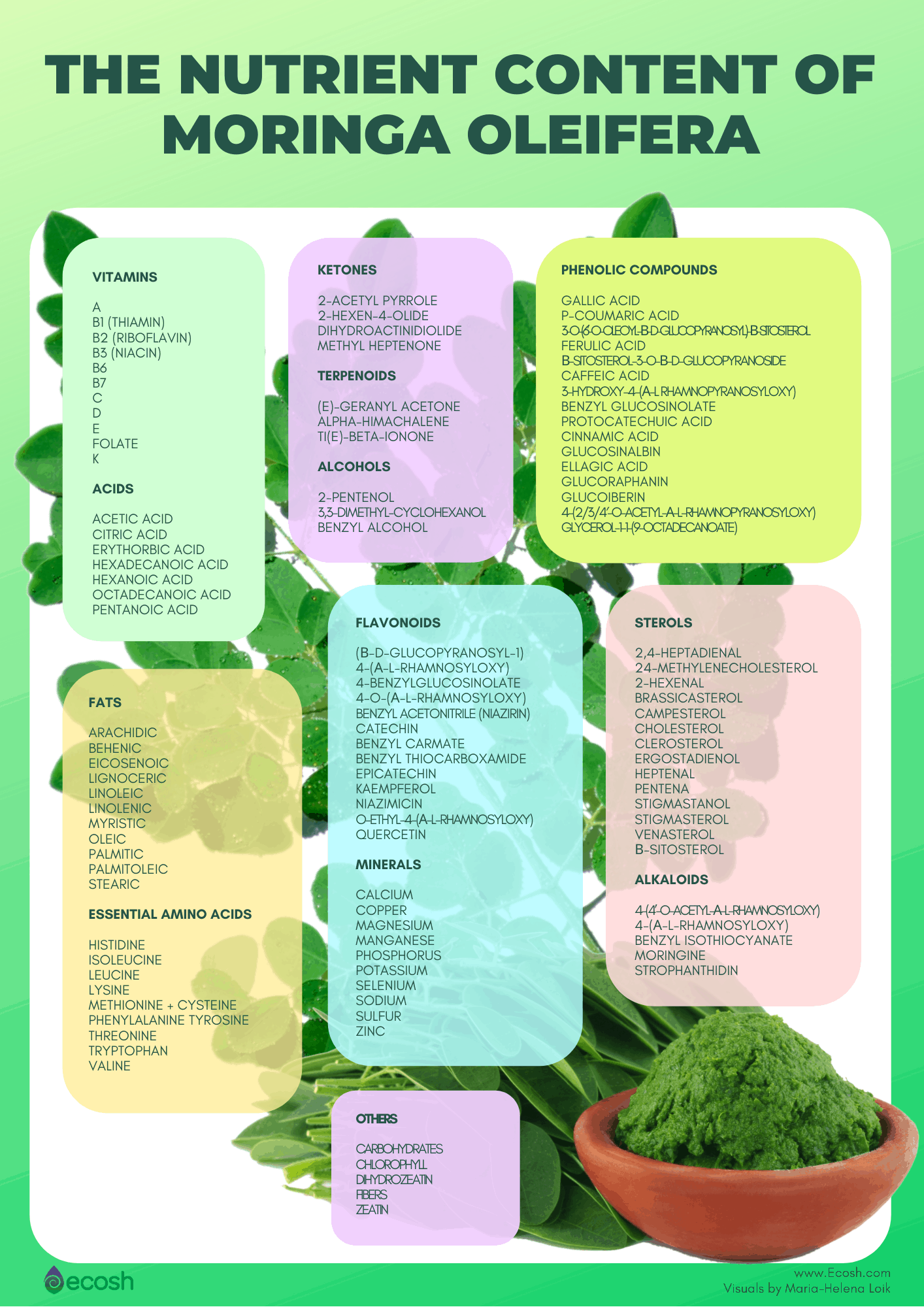 Ecosh_The_Nutrient_Content_Of_Moringa_Oleifera_Moringa_Nutrients