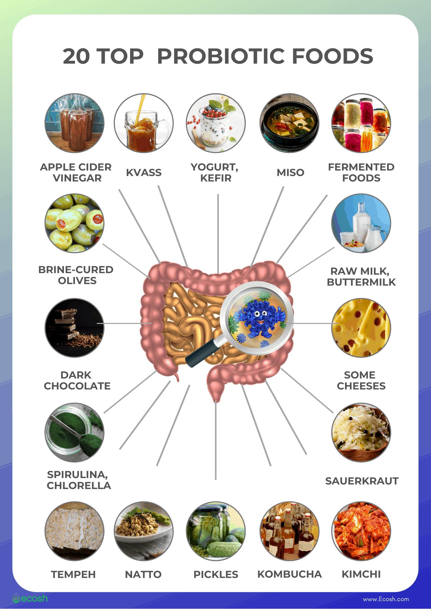 Ecosh-20_Top_Probiotic_Foods_Foods_High_in_Probiotics