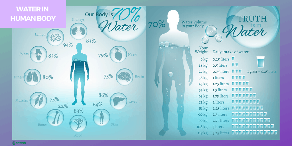 Water_consumtion_How_much_water_your_body_needs_to_look_younger_and_stay_healthy