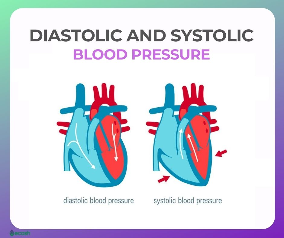 Ecosh_Diastolic_Blood_Pressure_Systolic_Blood_Pressure - Copy