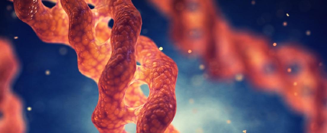 Vitamin_C_Role_in_Collagen_Formation_Collagen molecule