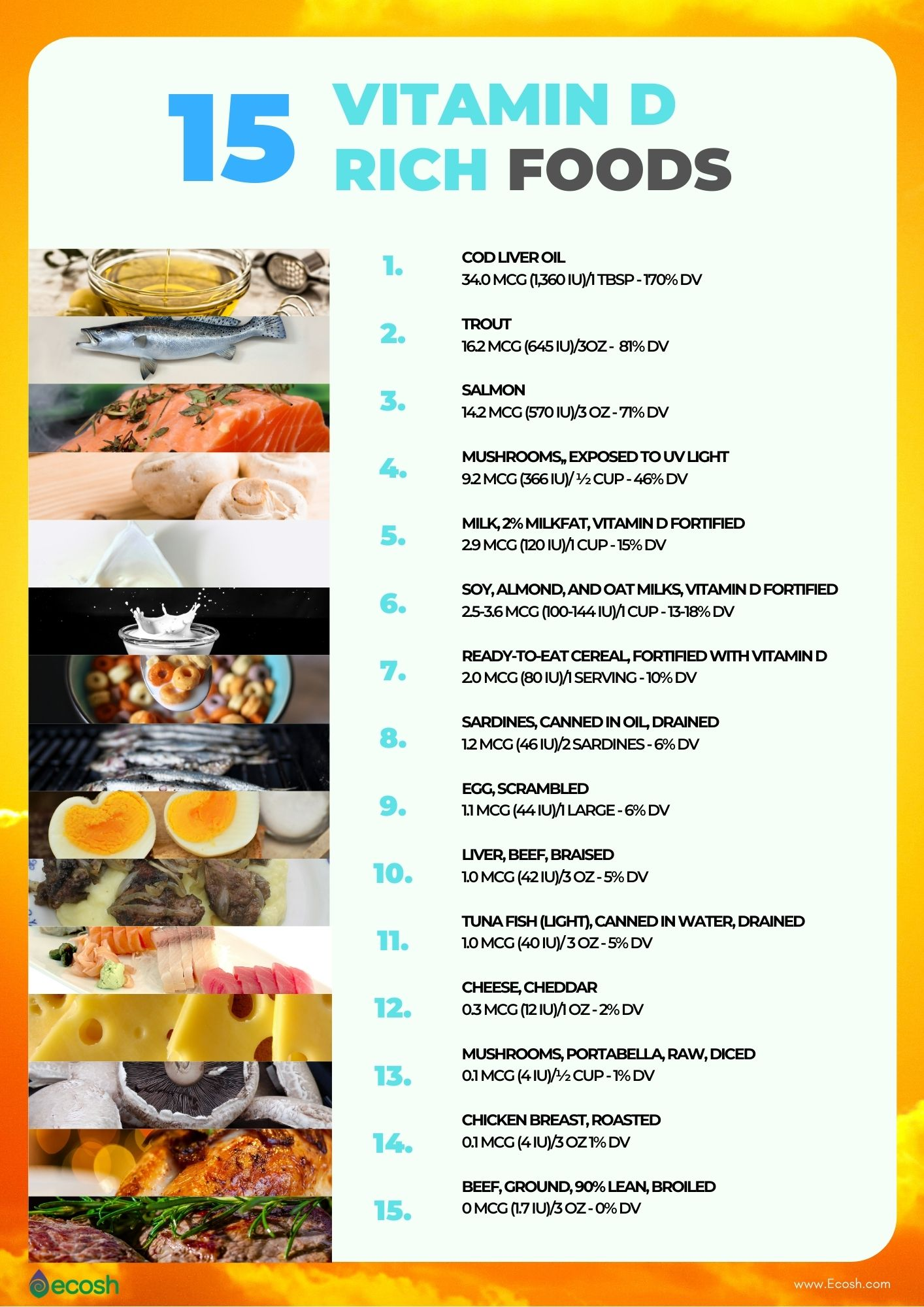 15_Vitamin_D_Rich_Foods_Vitamin_D_Content_In_Common_Foods_Vitamin_D_Sources