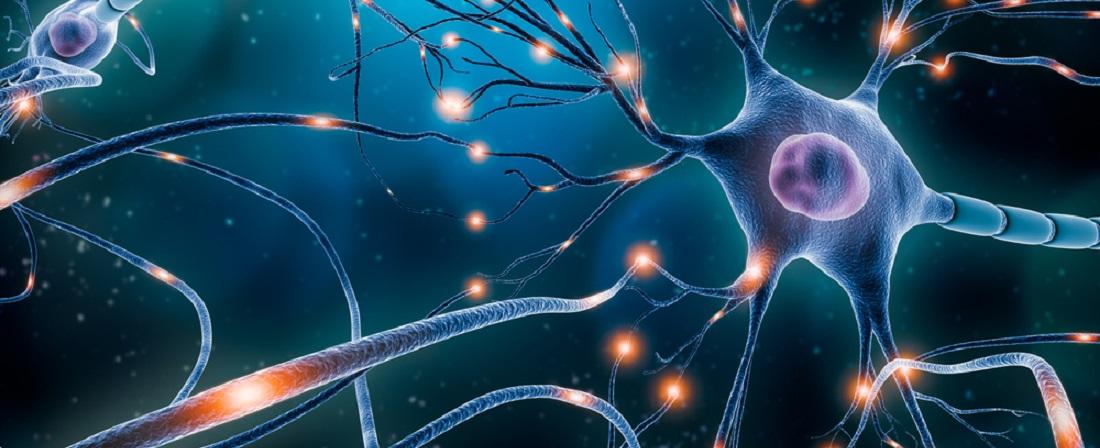 Fibromyalgia_Chemical_Imbalance_In_Brain_Wrong_Nerve_Signals_Nerves