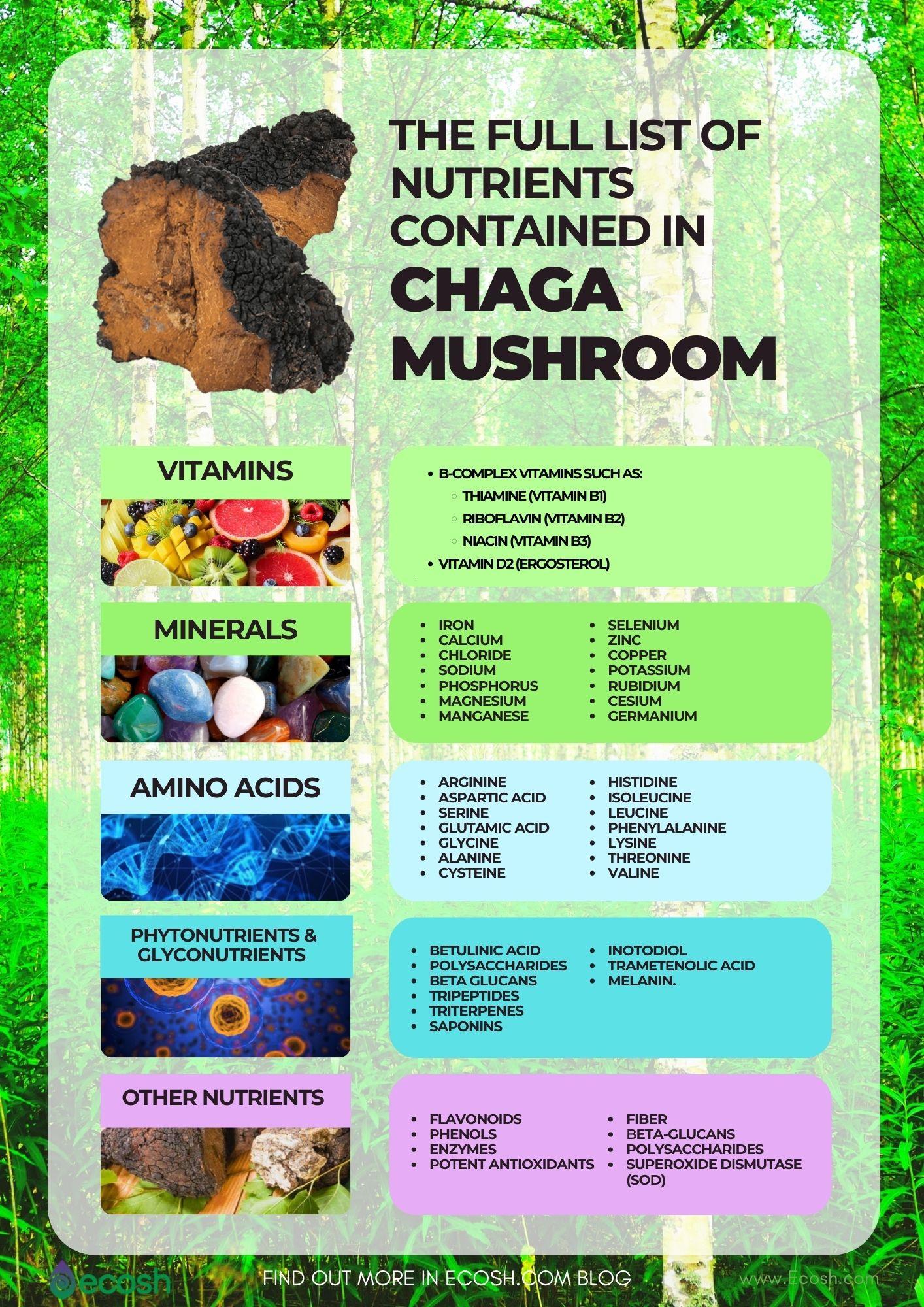 Ecosh_The_Full_List_of_Nutrients_Contained_In_Chaga_Vitamins_In_Chaga_Minerals_in_Chaga_Amino_Acids_In_Chaga_Mushroom_Antioxidants_In_Chaga_SOD_In_Chaga_Mushroom_Vitamins_Contained_In_Chaga_