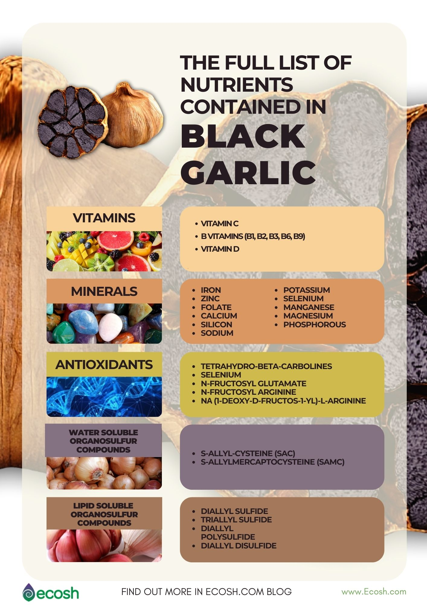 Ecosh_The_Full_List_of_Nutrients_In_Black_Garlic_Vitamins_In_Black_Garlic_Minerals_in_Black_Garlic_Antioxidants_In_Black_Garlic_Black_Garlic_Supplements
